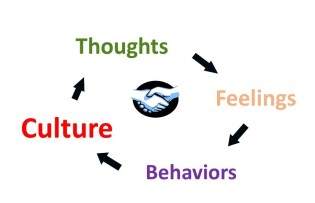 Culture Cycle